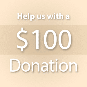$100-donation-product
